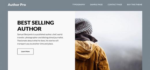 author pro wordpress theme